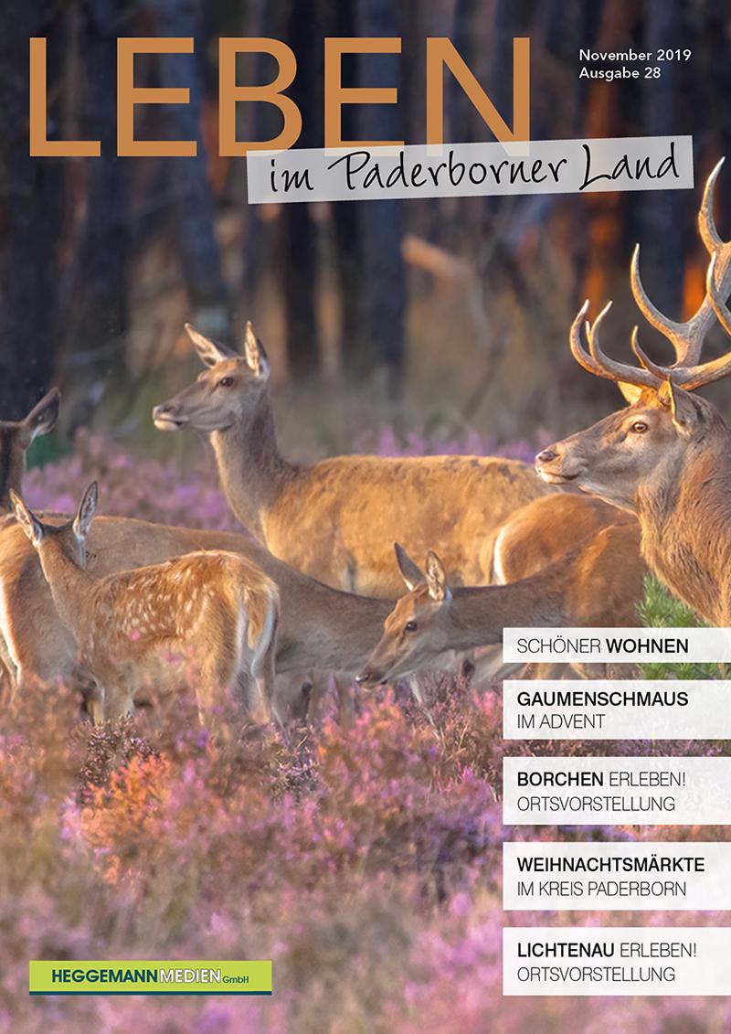 Leben im Paderborner Land 28 von November 2020